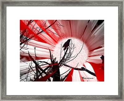 Crow Sunset Framed Print