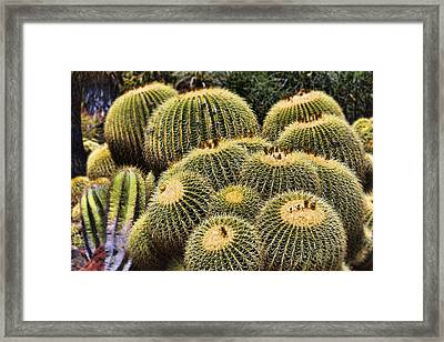 Crowded Framed Print by Kelley King