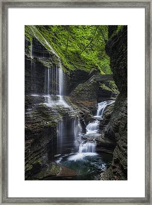 Crown Jewel Framed Print by Bill Wakeley