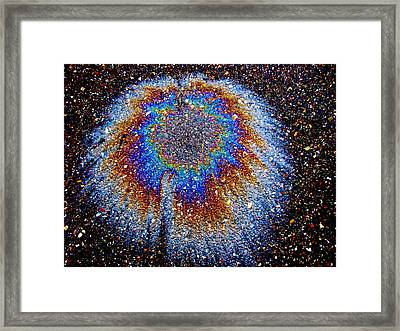 Crown Of Creation Framed Print