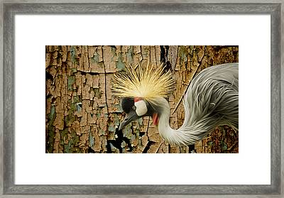 Crowned Crane Consistency Framed Print