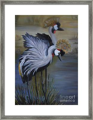 Crowned Cranes Framed Print by Nancy Bradley