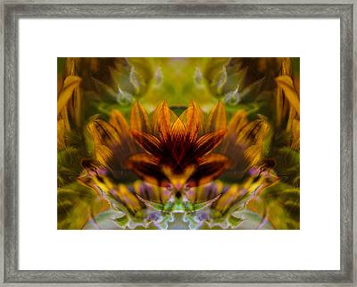 Crowned  Framed Print by Omaste Witkowski