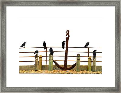 Crows At Anchor Framed Print by John King