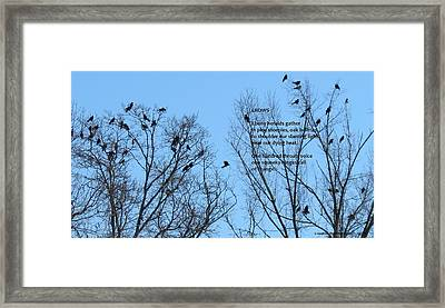 Crows Framed Print by Catherine Favole-Gruber