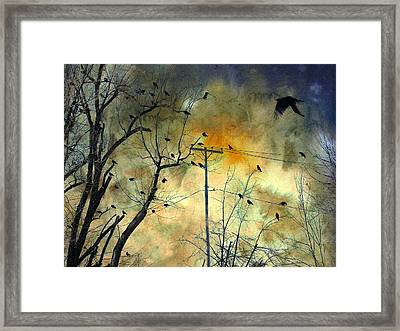Crows Colors Framed Print