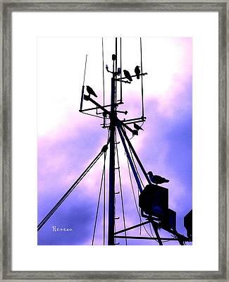 Crows Nest Literally Framed Print by Sadie Reneau