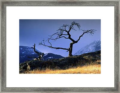 Crow's Nest Pass Canada Framed Print by Bob Christopher