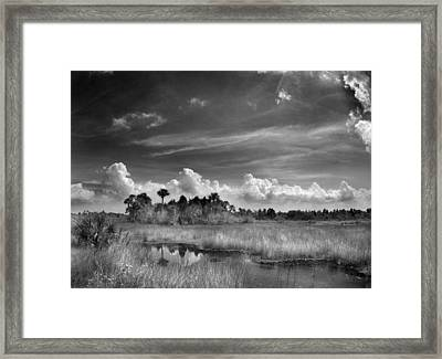 Cruickshank Trail Framed Print