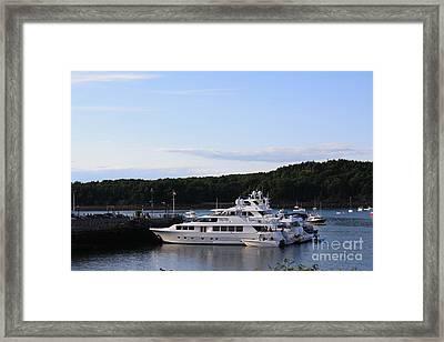 Cruiseships At Bar Harbor Framed Print by Dora Sofia Caputo Photographic Art and Design