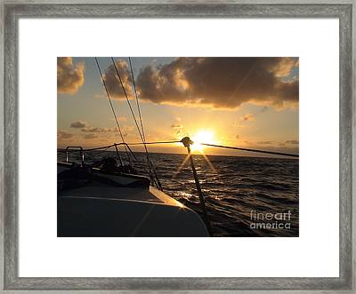 Cruising Life Framed Print by Laura  Wong-Rose