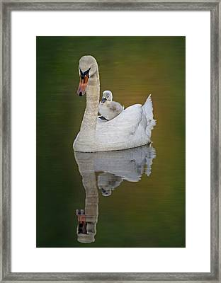 Cruising With Mom Framed Print by Susan Candelario