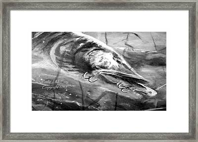 Crunch Time - Musky Framed Print