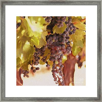 Crush Time Framed Print by Artist and Photographer Laura Wrede