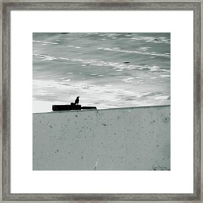 Cry For Sky Framed Print by Lin Haring