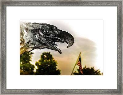 Crying Eagle Framed Print by Jon Cody