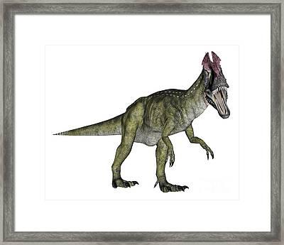 Cryolophosaurus Dinosaur Framed Print by Elena Duvernay