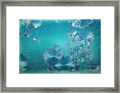 Crystal Blue Persuasion Framed Print by Geri Glavis
