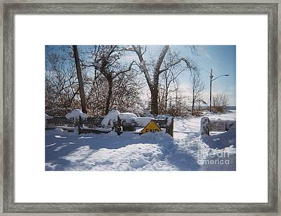 Crystal Day Road To Conference House Staten Island Ny Framed Print by Desline Vitto