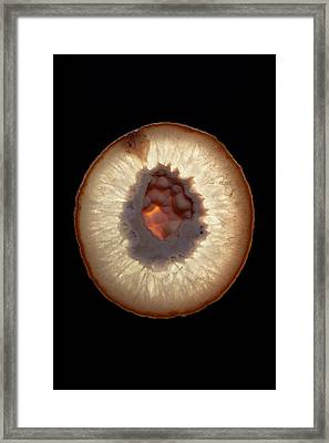 Crystal Geode Framed Print