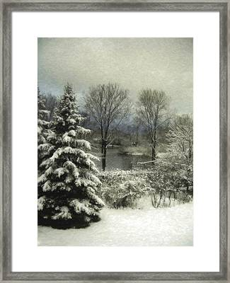 Crystal Morning Framed Print