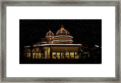 Crystal Palace Framed Print by David Lee Thompson