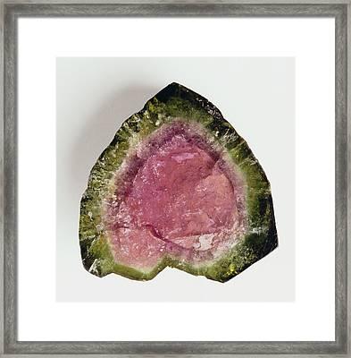 Crystal Section Of Watermelon Tourmaline Framed Print by Dorling Kindersley/uig
