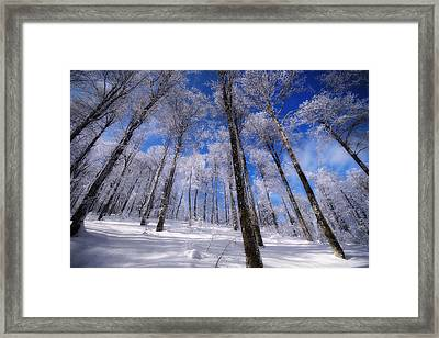 Framed Print featuring the photograph Crystal Vision by Philippe Sainte-Laudy