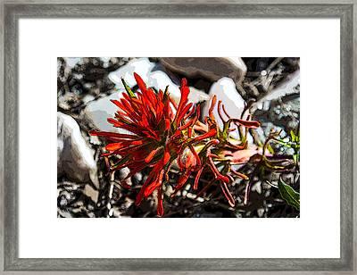Crystalborn Framed Print