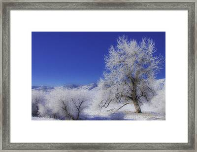 Crystalized Valley Framed Print