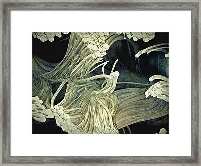 Cthulhu Beckons Framed Print by Susan Maxwell Schmidt