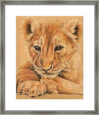 Framed Print featuring the drawing cub by Heidi Kriel