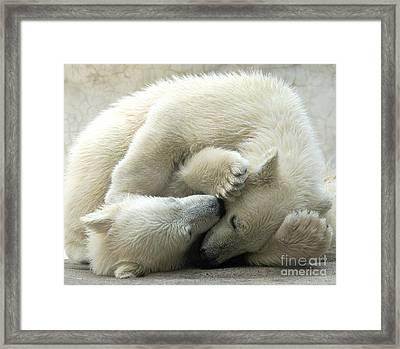 Cub Love Framed Print