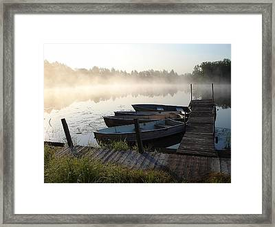 Cub World Marina Framed Print by Aiden Bishop