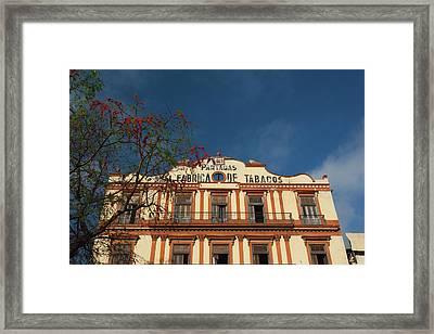 Cuba, Havana, Central Havana Framed Print by Walter Bibikow
