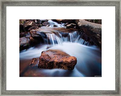 Cucharas Framed Print
