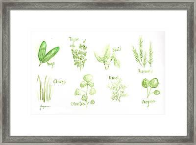 Culinary Herbs Leafy Greens Framed Print by Patricia Awapara