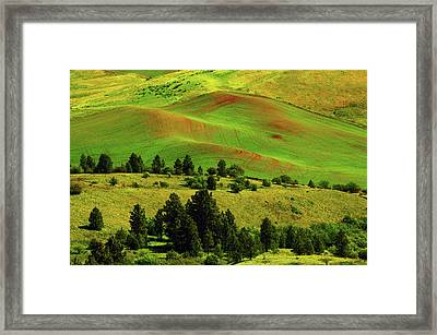 Cultivation Patterns In The Palouse Framed Print by Michel Hersen