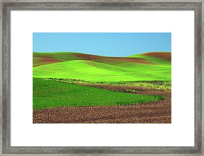 Cultivation Patterns, Palouse, Whitman Framed Print