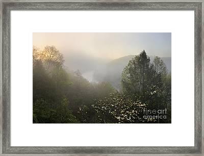 Cumberland River Dawn - D008596 Framed Print