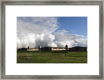 Cumulas Clouds Form Over Chicken Coops In Stockton Framed Print