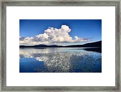 Cumulonimbus Over Water Lilies Framed Print by Rich Rauenzahn