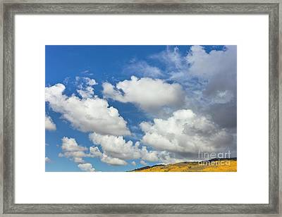 Cumulus Clouds And Aspens Framed Print by Yva Momatiuk John Eastcott
