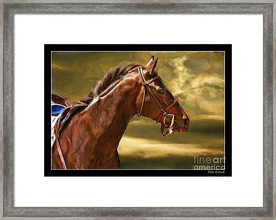 Cuore Bella The Race Horse Framed Print by Blake Richards
