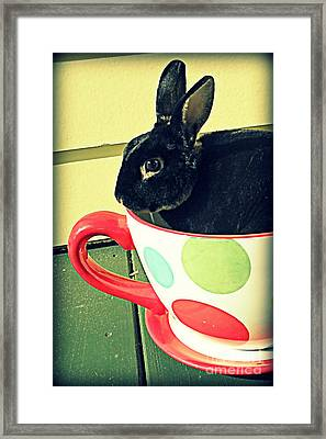 Cup O' Rabbit Framed Print
