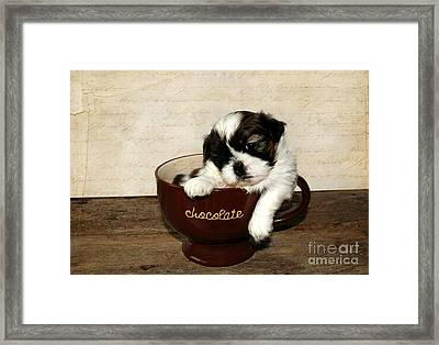 Cup Of Puppy Framed Print by Darren Fisher