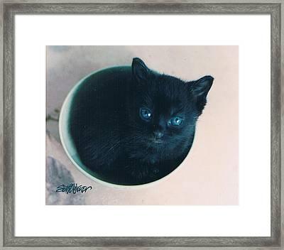 Cup O'kitty Framed Print