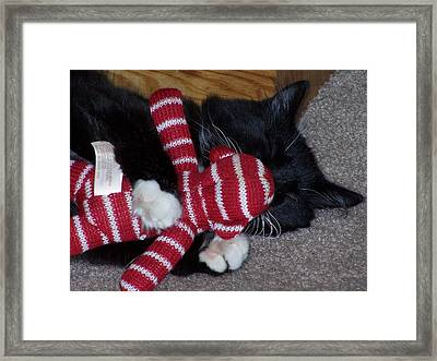 Cupcakes' Christmas Close Up Framed Print by Gene Ritchhart