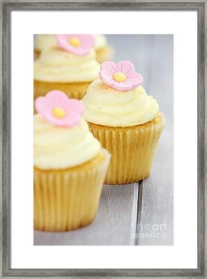Cupcakes In A Row Framed Print by Stephanie Frey