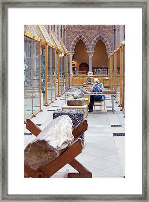 Curator In Mineral Gallery Framed Print